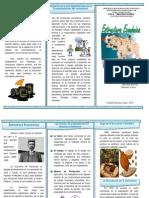 Triptico Estructura Economico Venezuela 1899-1935