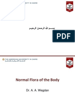 Presentation2 Normal Flora