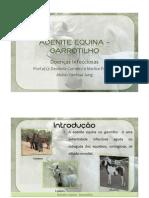 ADENITE EQUINA - GARROTILHO