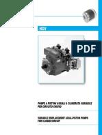Serie_HCV_ENG.pdf