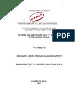 Modelo de Informe de Expediente DIVORCIO POR CAUSAL -Optar Titulo Profesional de Abogado