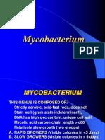 Mycobacterium lecture