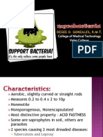 Mycobacteria-Part 1 Lecture
