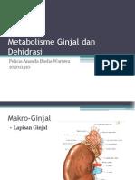 Metabolisme Ginjal Dan Dehidrasi