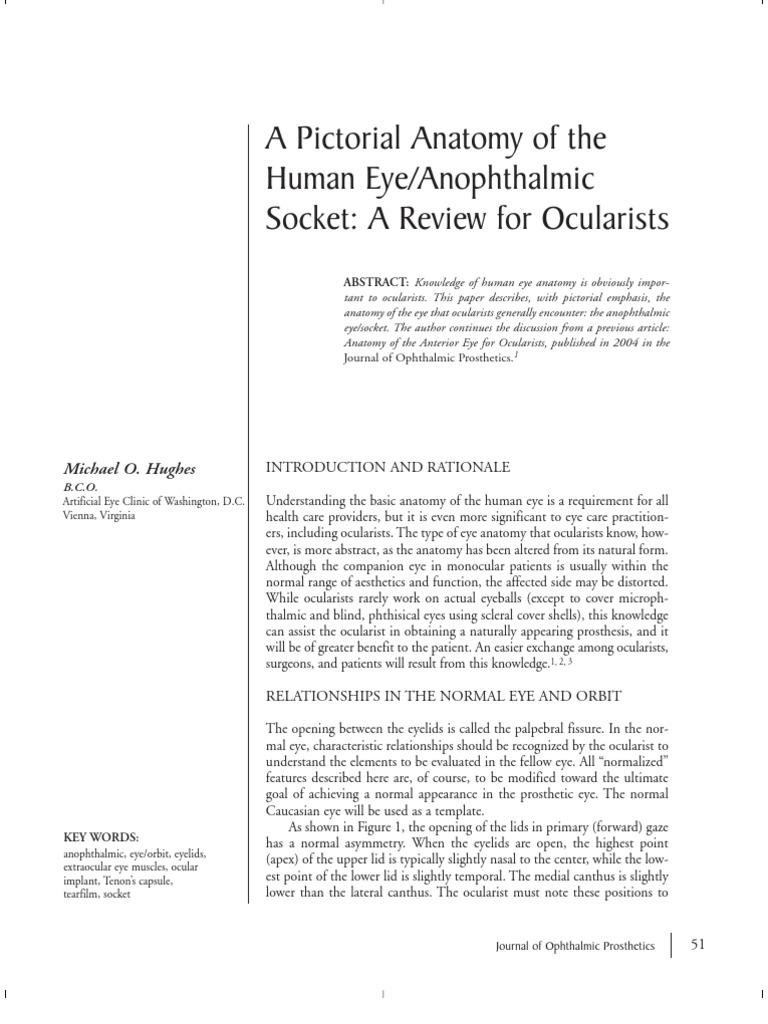 Pictorial Anatomy of Human Eye or Anophthalmic Socket | Human Eye ...
