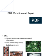 Mol Biol Lec 7 DNA Mutation and Repair Atea 091204
