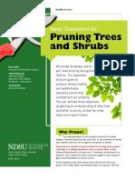 pruningtreesandshrubs