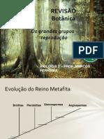 BOTÂNICA - REVISÃO