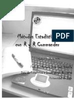 Saez Castillo RRCmdrv21