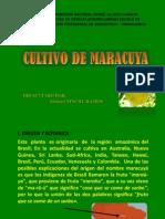 Cultivo de Maracuya