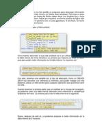 Descarga de fichero de longitud fija.pdf