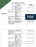 CRONOGRAMA DE ACTIVIDADES prof maida.doc
