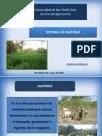 Copia de Sistema de Pastoreo