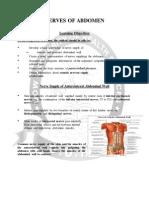 Anatomy - Nerves of Abdomen