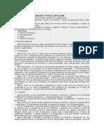 Puebla - Agentes de comunion y participacion - Capítulo II