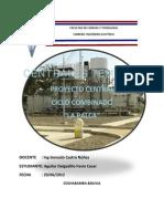 ProyectoCicloCombinadoLa Palca