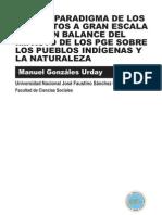 Brasil Paradigma de Los Proyectos a Gran Escala (Pge)