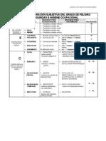 TABLA DE VALORACIÓN SUBJETIVA DEL GRADO DE PELIGRO