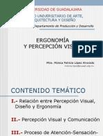 ERGONOMÍA Y PERCEPCIÓN VISUAL
