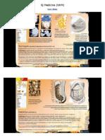 Új Medicina (GNM) Szerv Atlasz_3.1.3 - 6.5.G
