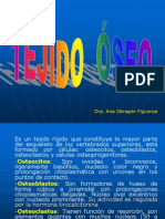 TEJIDO  ÓSEO-2008