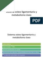 Sistema osteo-ligamentario y metabolismo óseo