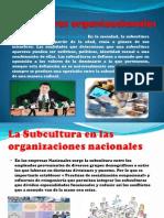 Influencia Del Lider en La Cultura Organizacional