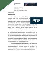 Informe Indidual-Yender R