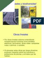 12- Obras Lineales y Biodiversidad