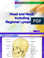 HEAD & NECK A&P.ppt