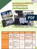 riesgos ambientales.pdf