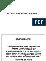 ESTRUTURA_ORGANIZACIONAL 2