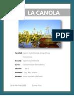 Informe de La Canola