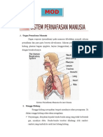 Modul Sistem Pernafasan