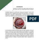 Tutoria Acinetobacter Licho