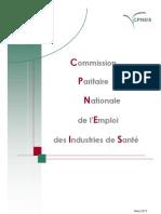 rapport-cpneis.pdf