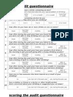Alcohol, Assessment Audit