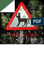Teo Serna, Poeta Visual.