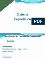 02 Sistema Esqueletico Prof. Nonato