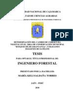 Tesis Forestal