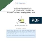 oracleberkeleydatabase.pdf