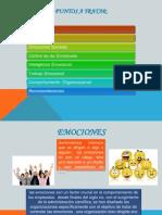 Emociones a Nivel Empresarial