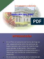 ANALISIS DE PAN - liz.ppt