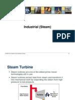 060216_Industrial_Steam.pdf