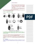 Apunte 4 (Test 21 y 27 Sept)
