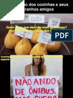 Revolucao dos Coxinhas.pps