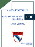 Guia Peces Galicia