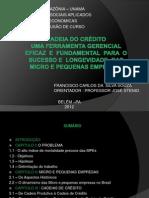 mONOGRAFIA cHICÃO CADEIA DE CRÉDITO