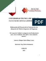 Tesis Holguer Pillajo.pdf