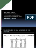 NEURORRAFIA SEMINARIO POSTGRADO